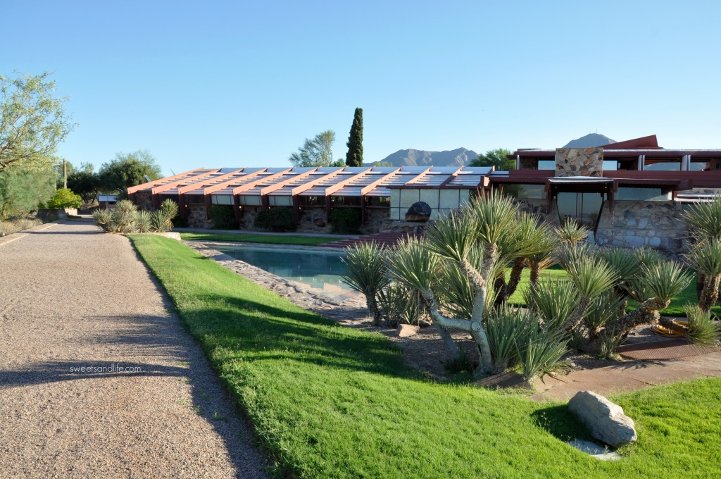 Sweets and Life: Taliesin West Tour